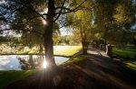 Willow path bridge 3