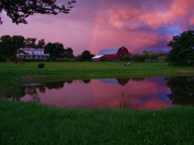 Beekman farm after storm