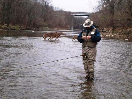 The catskill s are calling all fishermen upstate new for Roscoe ny fishing